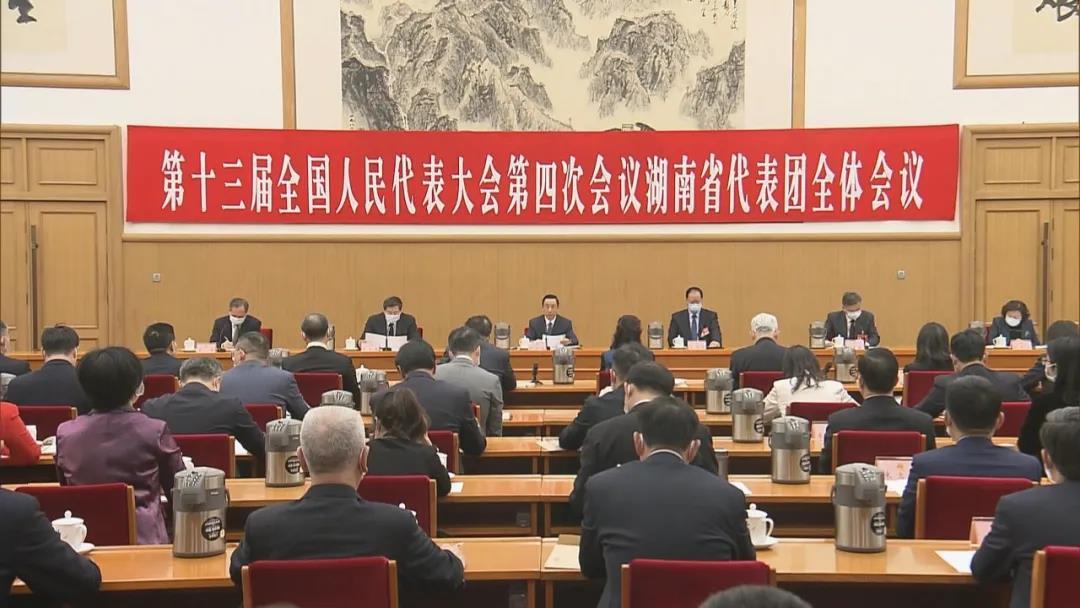 2021两会专题:湖南代表团与住湘政协委员集体建议三大事